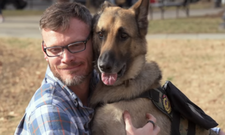 Axel the Service Dog Helping Capt Jason Haag, USMC ret.